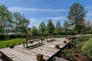 Photo 15: 101 3138 RIVERWALK Avenue in Vancouver: Champlain Heights Condo for sale (Vancouver East)  : MLS®# R2164116