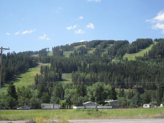 Photo 9: 14902 21 Avenue: Crowsnest Pass Residential Land for sale : MLS®# A1134722