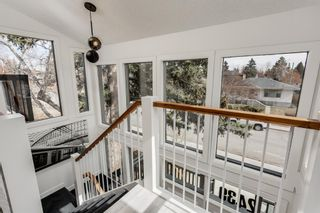 Photo 11: 2439 22A Street NW in Calgary: Banff Trail Detached for sale : MLS®# A1135055