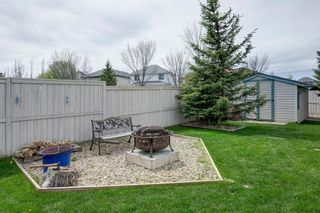 Photo 33: 50 Martha's Place NE in Calgary: Martindale Detached for sale : MLS®# A1119083