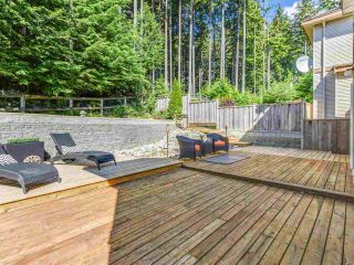Photo 10: 3392 PLATEAU Boulevard in Coquitlam: Westwood Plateau House for sale : MLS®# R2093003