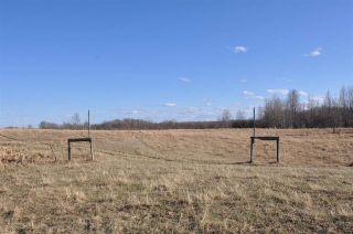 Photo 20: 10 57126 Range Road 12: Rural Barrhead County Rural Land/Vacant Lot for sale : MLS®# E4241768