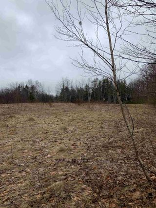 Photo 5: Lot 5 Highway 362 in Victoria Vale: 400-Annapolis County Vacant Land for sale (Annapolis Valley)  : MLS®# 202106854