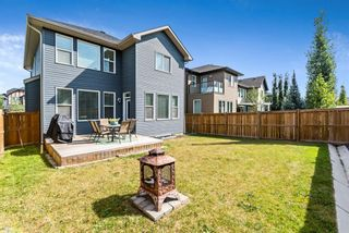 Photo 44: 282 Mountainview Drive: Okotoks Detached for sale : MLS®# A1134197