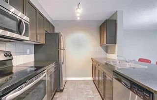 Photo 20: 1214 1317 27 Street SE in Calgary: Albert Park/Radisson Heights Apartment for sale : MLS®# A1142395