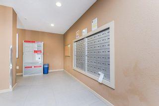 Photo 36: 212 1070 MCCONACHIE Boulevard in Edmonton: Zone 03 Condo for sale : MLS®# E4247944