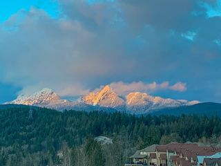 """Photo 30: 13589 NELSON PEAK Drive in Maple Ridge: Silver Valley 1/2 Duplex for sale in """"NELSONS PEAK"""" : MLS®# R2599049"""
