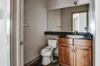 Photo 20: 36 ROYAL HIGHLAND Court NW in Calgary: Royal Oak Detached for sale : MLS®# A1029258