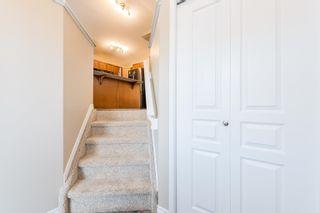 Photo 5: 21323 59 Avenue in Edmonton: Zone 58 House for sale : MLS®# E4264282