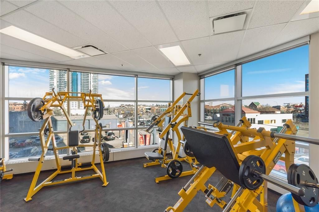 Photo 38: Photos: 410 225 11 Avenue SE in Calgary: Beltline Apartment for sale : MLS®# C4245710