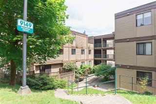"""Photo 14: 203 9149 SATURNA Drive in Burnaby: Simon Fraser Hills Condo for sale in """"MOUNTAINWOOD"""" (Burnaby North)  : MLS®# R2327187"""