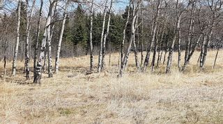 Photo 3: Range Road 55 in Rural Rocky View County: Rural Rocky View MD Land for sale : MLS®# C4295902