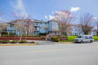 "Photo 1: 312 11510 225 Street in Maple Ridge: East Central Condo for sale in ""RIVERSIDE"" : MLS®# R2355823"