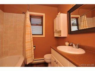 Photo 14: 1619 Barksdale Dr in VICTORIA: SE Lambrick Park House for sale (Saanich East)  : MLS®# 618275