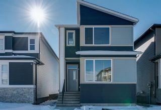 Photo 1: 286 Cornerstone Crescent NE in Calgary: Cornerstone Detached for sale : MLS®# A1075287