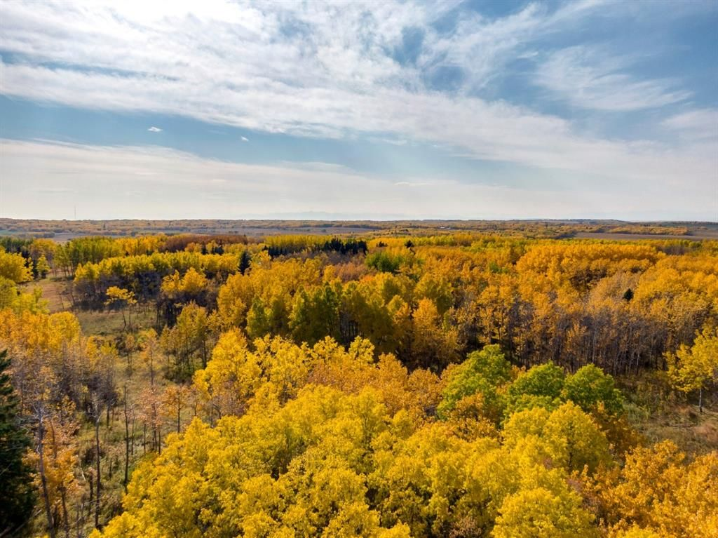 Main Photo: 31 Grove Lane in Rural Rocky View County: Rural Rocky View MD Residential Land for sale : MLS®# A1097684