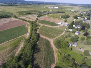 Photo 18: 2969 Highway 1 in Aylesford East: 404-Kings County Farm for sale (Annapolis Valley)  : MLS®# 201919454