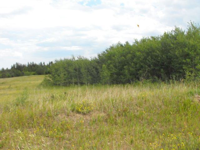 Main Photo: 108 56514 Rg Rd 60: Rural St. Paul County Rural Land/Vacant Lot for sale : MLS®# E4204223