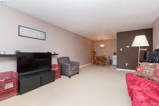 Photo 7: 107 1680 Poplar Ave in VICTORIA: SE Mt Tolmie Condo for sale (Saanich East)  : MLS®# 771821