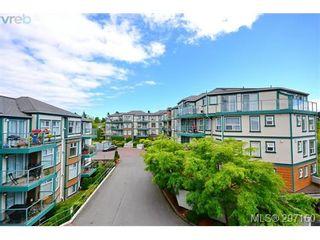 Photo 19: 403 894 Vernon Ave in VICTORIA: SE Swan Lake Condo for sale (Saanich East)  : MLS®# 579898