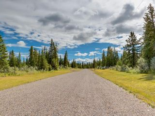 Photo 22: 8 34364 RANGE ROAD 42: Rural Mountain View County Land for sale : MLS®# A1017744
