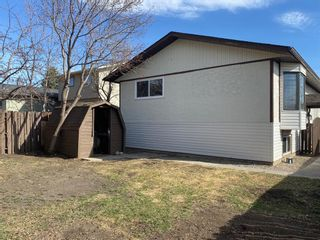 Photo 36: 425 Big Springs Drive SE: Airdrie Detached for sale : MLS®# A1087684