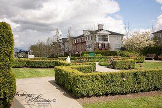 Photo 17: #39 11067 Barnston View Road, Pitt Meadows V945362