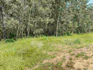 Photo 11: RGE RD 223 Twp Rd 594: Rural Thorhild County Rural Land/Vacant Lot for sale : MLS®# E4256609