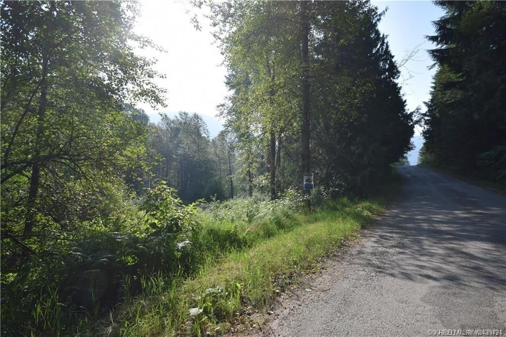 Main Photo: Parcel A 2ND AVENUE in Ymir: Vacant Land for sale : MLS®# 2453916