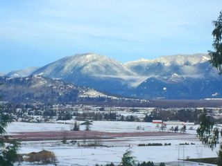 """Photo 43: 6251 REXFORD Drive in Chilliwack: Promontory House for sale in """"JINKERSON VISTAS"""" (Sardis)  : MLS®# R2527635"""