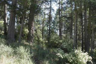 Photo 4: Lot 11 Cormorant Cres in Salt Spring: GI Salt Spring Land for sale (Gulf Islands)  : MLS®# 818159