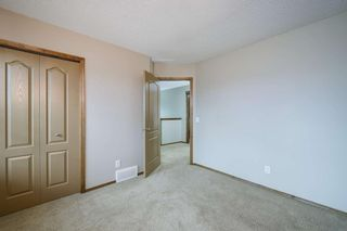 Photo 29: 234 ELGIN View SE in Calgary: McKenzie Towne Detached for sale : MLS®# A1035029