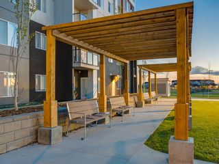 Photo 32: 1611 4641 128 Avenue NE in Calgary: Skyview Ranch Apartment for sale : MLS®# A1029088