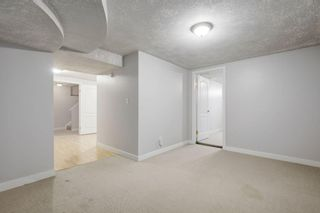 Photo 21: 4115 DOVERBROOK Road SE in Calgary: Dover Detached for sale : MLS®# C4295946