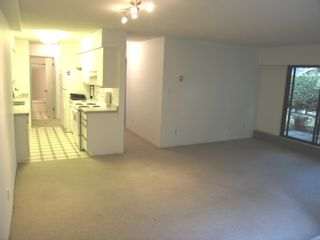 """Photo 5: 1424 WALNUT Street in Vancouver: Kitsilano Condo for sale in """"WALNUT PLACE"""" (Vancouver West)  : MLS®# V614832"""