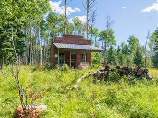 Photo 22: 33224 Range Road 61 Other: Rural Mountain View County Land for sale : MLS®# A1021849