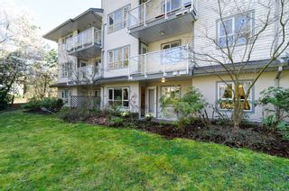 "Photo 20: 104 5577 SMITH Avenue in Burnaby: Central Park BS Condo for sale in ""Cotton Grove in Garden Village"" (Burnaby South)  : MLS®# V1055670"