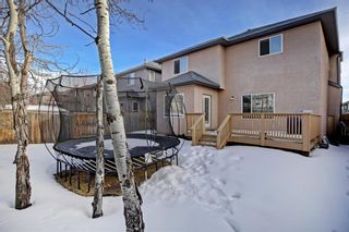 Photo 39: 26 West Cedar Place SW in Calgary: West Springs Detached for sale : MLS®# A1076093