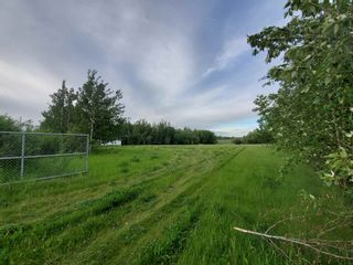 Photo 6: 53145 RGE RD 223: Rural Strathcona County Rural Land/Vacant Lot for sale : MLS®# E4250369