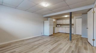 Photo 19: 3807 49 Street NE in Calgary: Whitehorn Detached for sale : MLS®# A1066626