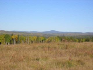 Photo 9: : Edson Rural Land for sale ()  : MLS®# 22122