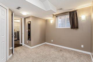Photo 24: 27 Auburn Bay Manor SE in Calgary: Auburn Bay Detached for sale : MLS®# A1073937