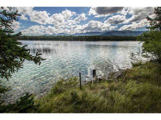 Main Photo: 1888 Marriot Road in Big Bar: Land for sale (100 Mile House (Zone 10))  : MLS®# 141373