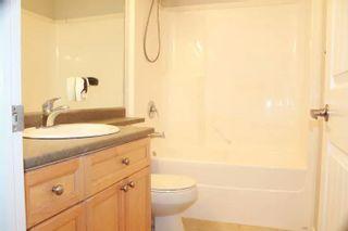 Photo 12: 17823 90 Street in Edmonton: Zone 28 House for sale : MLS®# E4237270