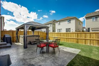 Photo 22: 30 Windford Heights SW: Airdrie Detached for sale : MLS®# A1109515
