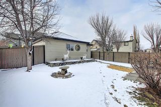 Photo 34: 51 Prestwick Street SE in Calgary: McKenzie Towne Detached for sale : MLS®# A1086286