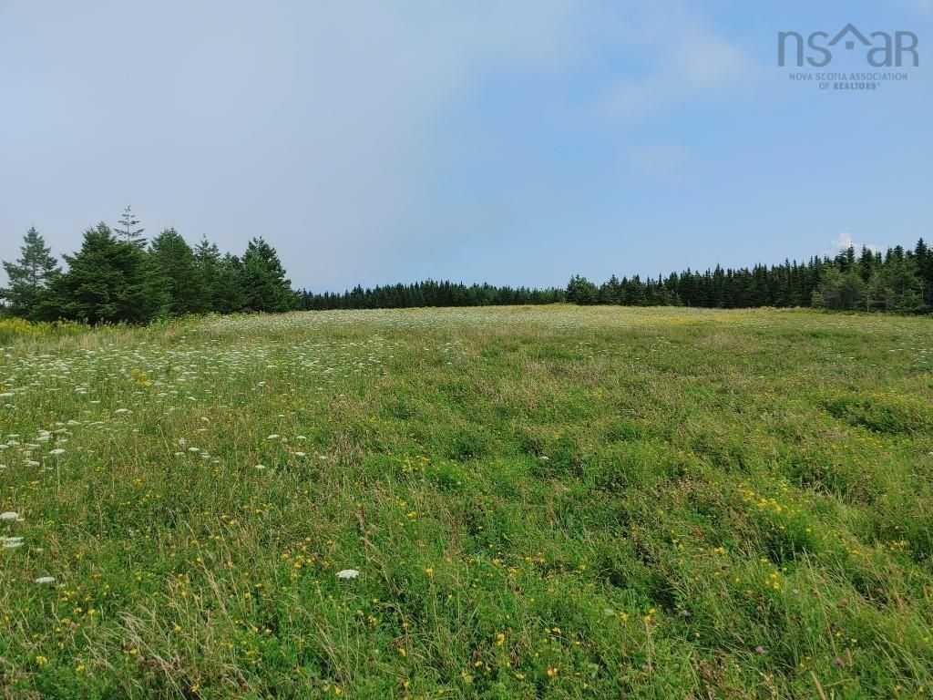 Main Photo: Lot Nollett Beckwith Road in Ogilvie: 404-Kings County Vacant Land for sale (Annapolis Valley)  : MLS®# 202120227