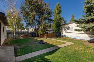 Photo 34: 5011 45 Avenue: Calmar House for sale : MLS®# E4265874