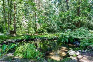Photo 8: 16 Clovermeadow Crescent in Langley: Salmon River Home for sale ()