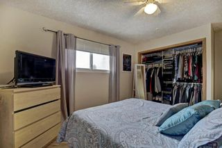 Photo 13: 3303 39 Street SE in Calgary: Dover Detached for sale : MLS®# A1084861